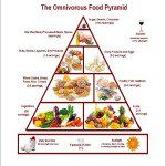 download pic omnivorous food pyramid