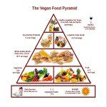 download pic vegan food pyramid